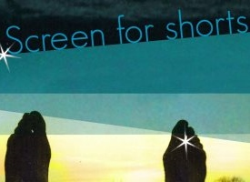 Screen_for_shorts-2011